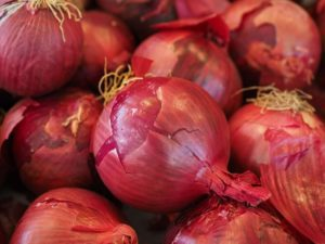 Onions for Curries
